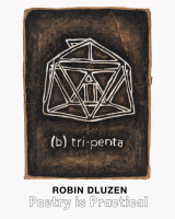 Robin Dluzen Catalog Cover