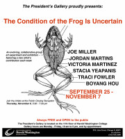 Promo Image_The Condition of the Frog Is Uncertain
